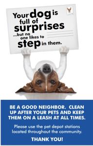 Pet surprise 2