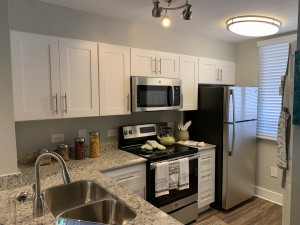 1 Bedroom Apartment in West Palm Beach, Florida for rent