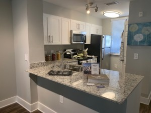 Two Bedroom Apartment in West Palm Beach, Florida for rent
